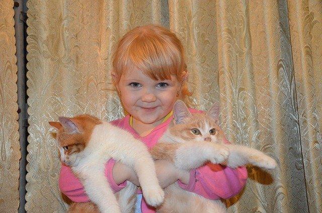 malá holčička a kočky
